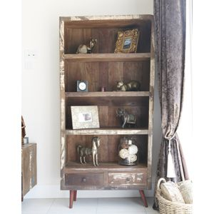Recycled Retro Bookcase